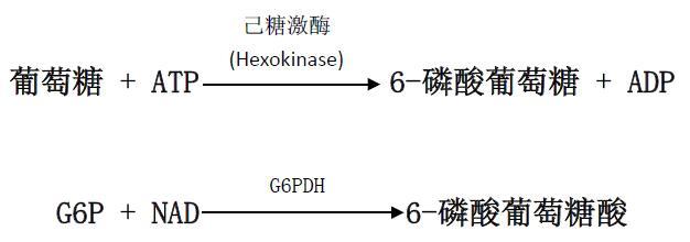 葡萄糖(HK)检测试剂盒原理